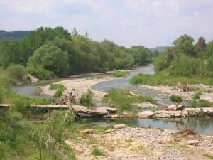 Σχετικά με την μόλυνση του ποταμού Ευρώτα